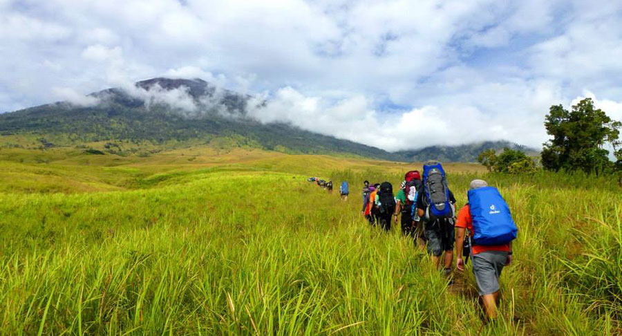 Savanna Sembalun Lawang regions of Mount Rinjani Lombok Island